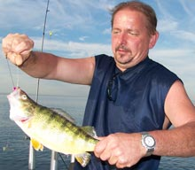 jumbo lake erie perch